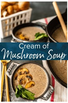 Cream of Mushroom Soup is not only a delicious soup that's perfect for eating on its own, it's also a common ingredient in many amazing dishes. This Homemade Cream of Mushroom Soup recipe is way better than the store-bought stuff in a can, and this can easily be prepared and saved ahead of time to use in any recipe!