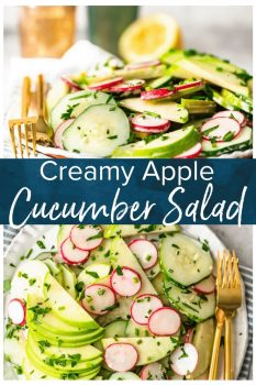 This Creamy Cucumber Salad is just the right mix of healthy veggies and delicious flavor. This easy cucumber salad recipe (cucumbers, radishes, and apples) features a tasty cucumber salad dressing made with mayo and apple cider vinegar. It's a fresh and simple salad perfect for any occasion!