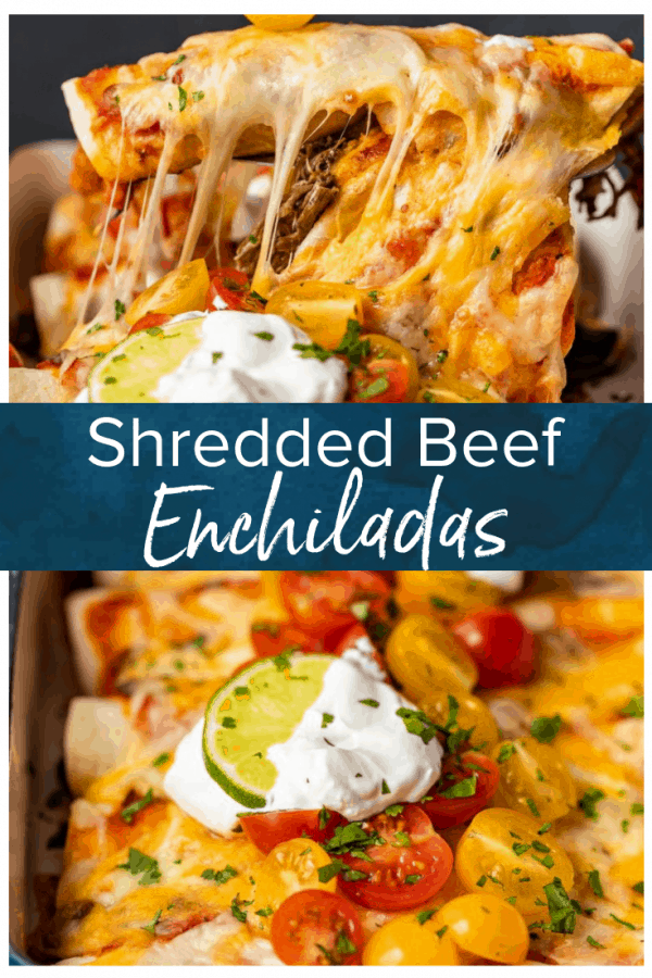 Shredded Beef Enchiladas are the perfect thing to serve for dinner. This is the best beef enchilada recipe I've ever had! They're filled with the most flavorful shredded beef, and topped with sour cream, cheese, tomatoes, and more. Make this amazing beef enchiladas recipe right away! #thecookierookie #enchiladas #beef #beefenchiladas #mexican #texmex #dinnerrecipes