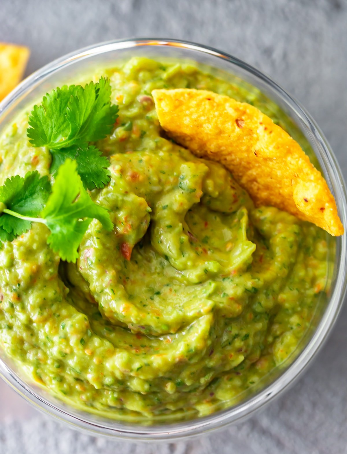 guacamole in a food processor with one chip dipped in