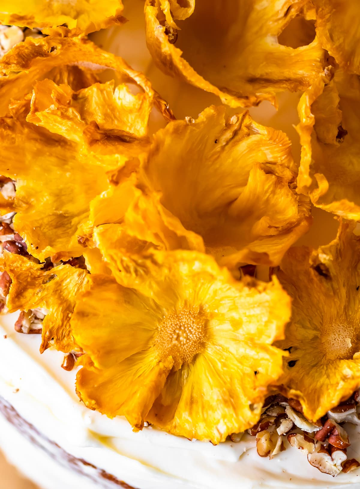 close up on dried pineapple flowers