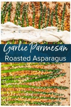 Garlic Asparagus is an easy side dish for any meal. This CRISPY garlic roasted asparagus recipe is both healthy and flavorful. Baked with panko breadcrumbs, garlic, cheese, and olive oil, this is a dish everyone is sure to love. If that's not enough, our garlic parmesan asparagus is topped off with homemade garlic aioli! #thecookierookie #asparagus #sidedish #holidayrecipes #easter #vegetables #garlic
