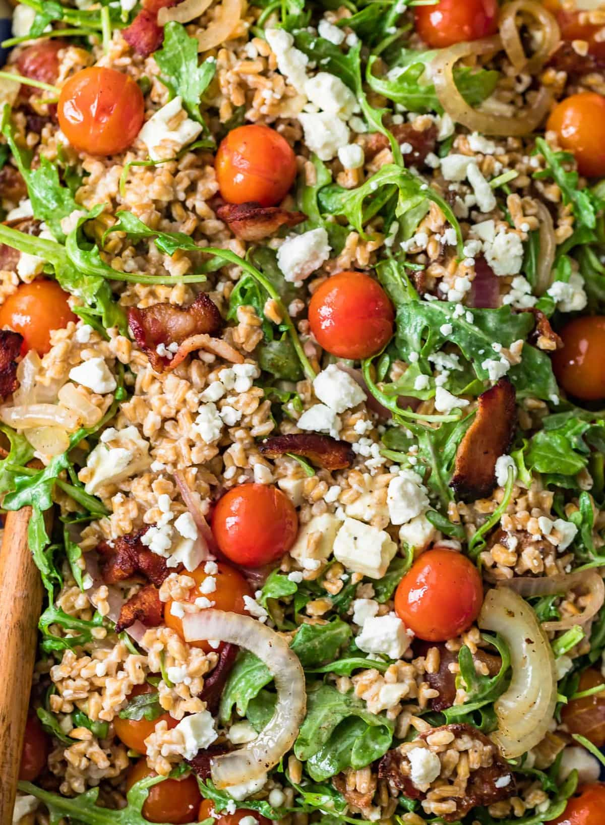 close up on a salad made with arugula, tomatoes, onion, feta, bacon, and farro