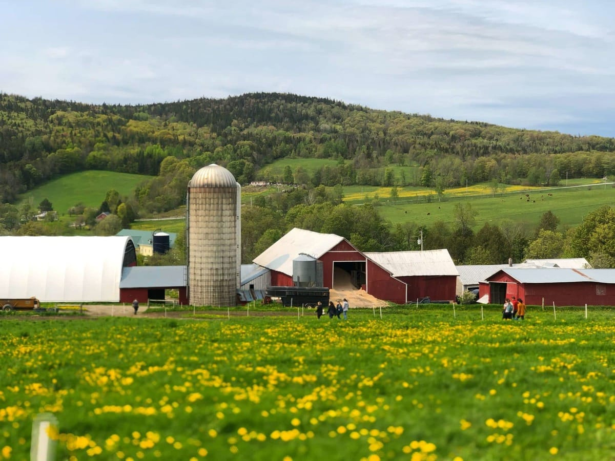 picture of stonyfield dairy farm