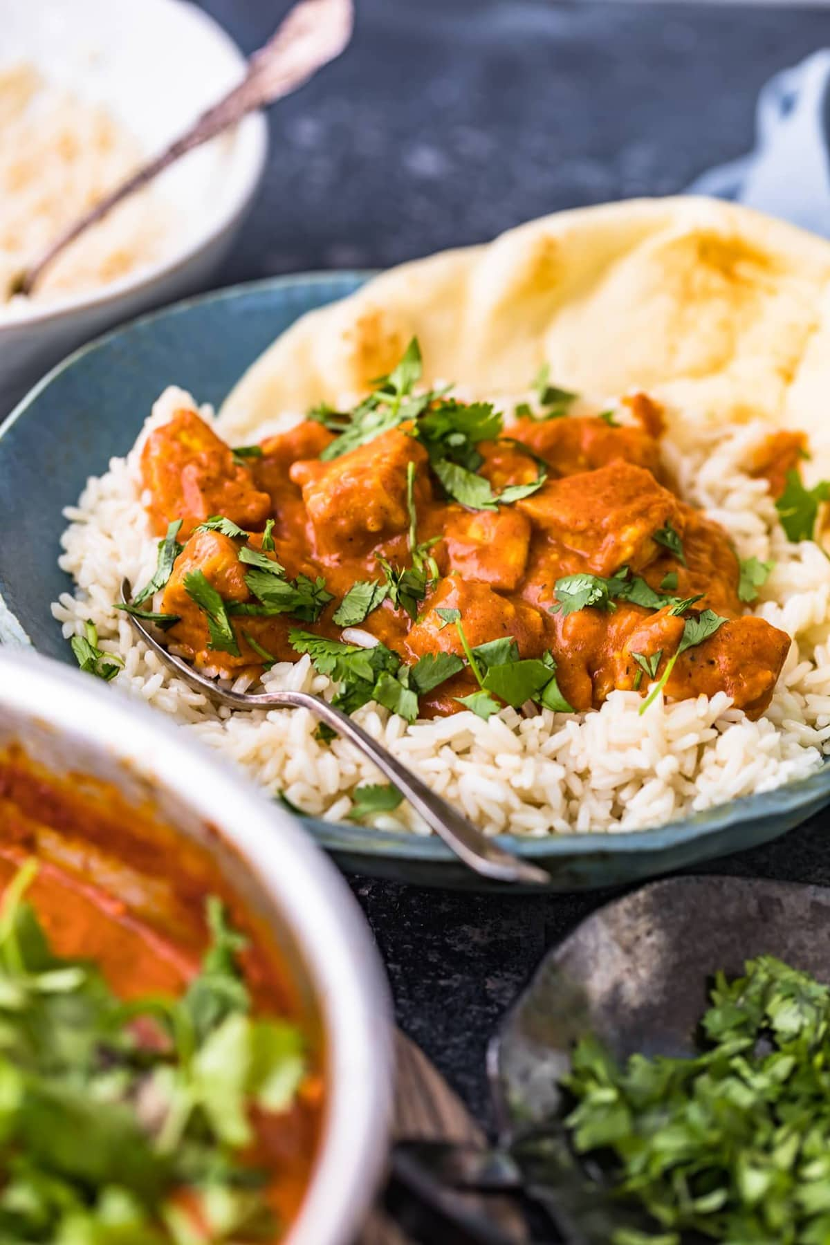 chicken curry on a bed of rice