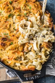 A close up of food, with Chicken and Tetrazzini
