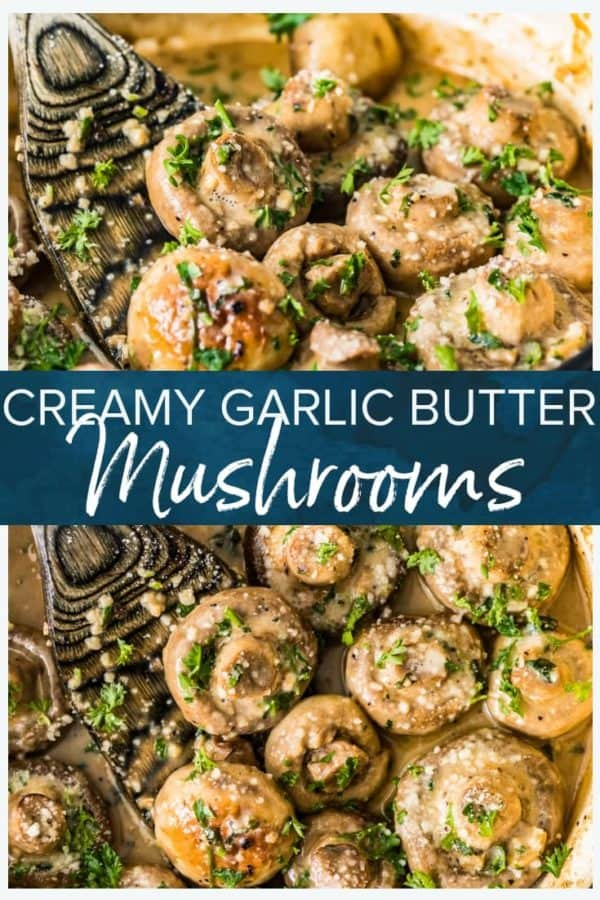 creamy garlic butter mushrooms pinterest pic