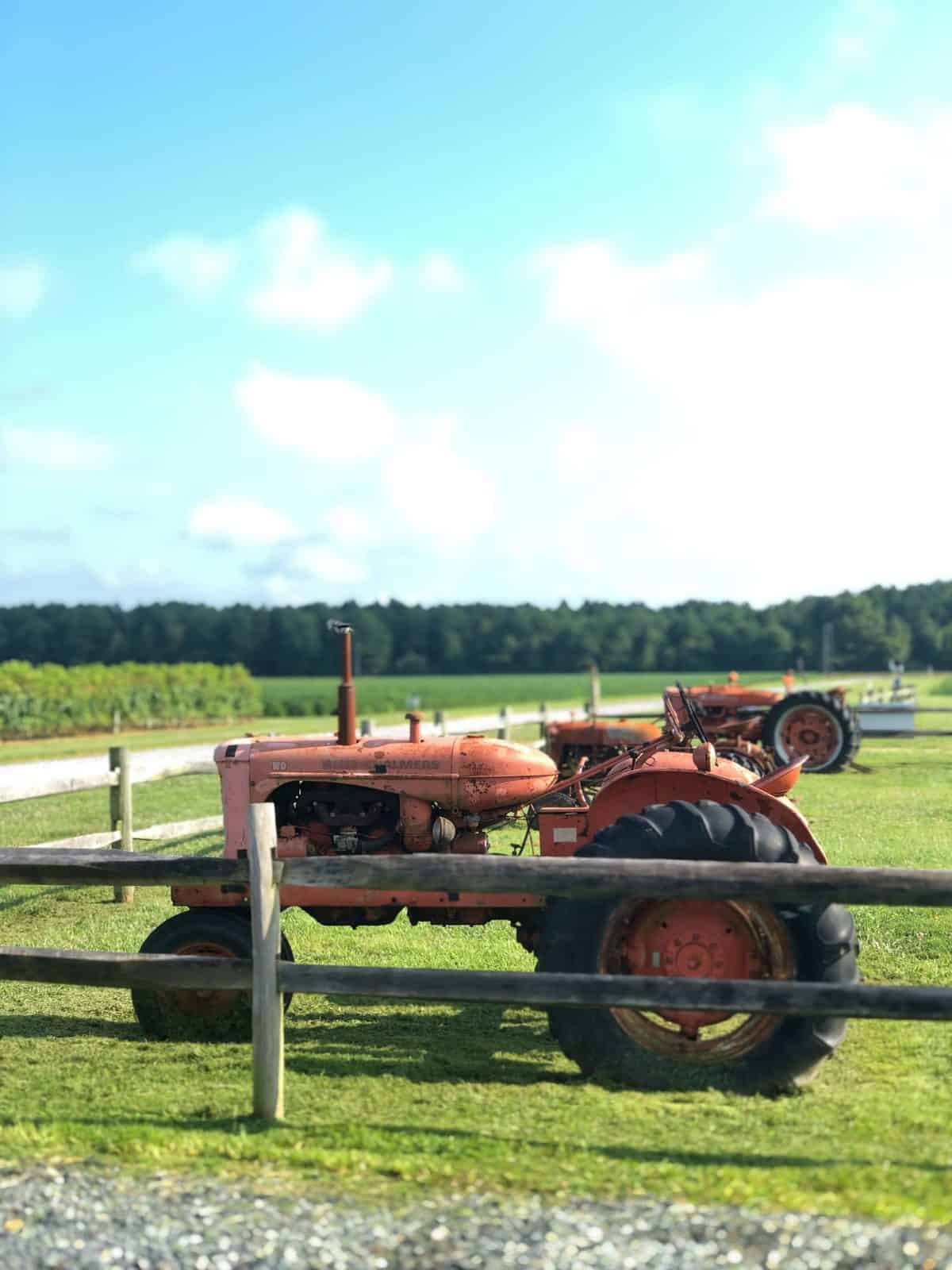 An old red tractor on a lawn with a wooden fence