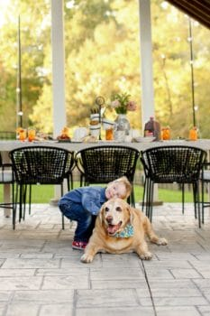 A young boy hugging a dog with a table behind them