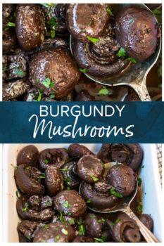 burgndy mushrooms pinterest collage