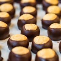 several buckeye candies on table