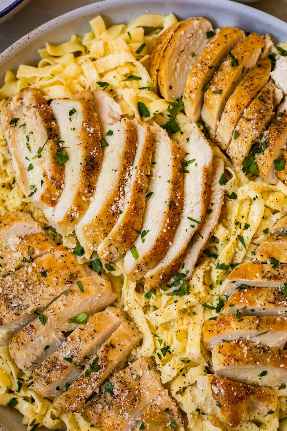 Chicken alfredo  garnished with fresh herbs
