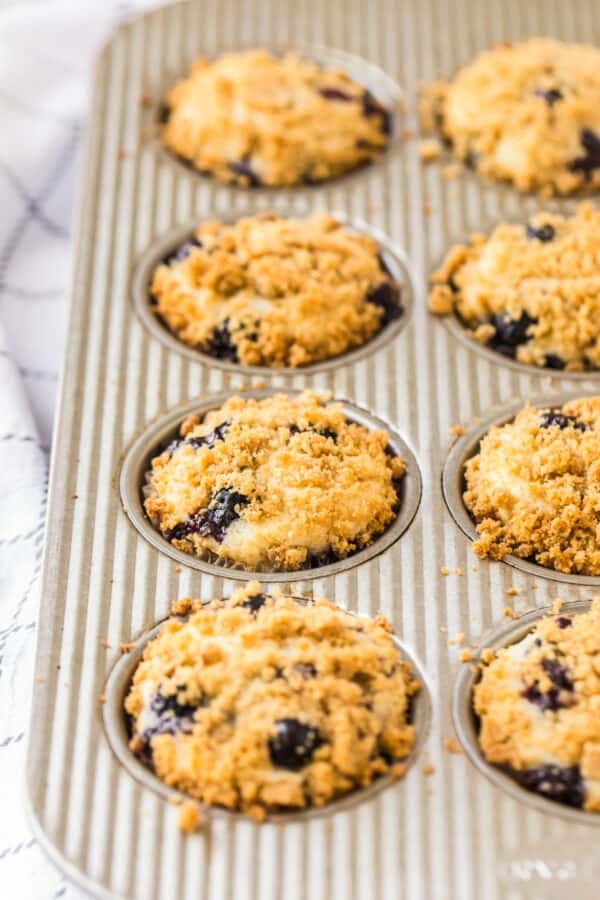 side shot of muffin tin with blueberry muffins