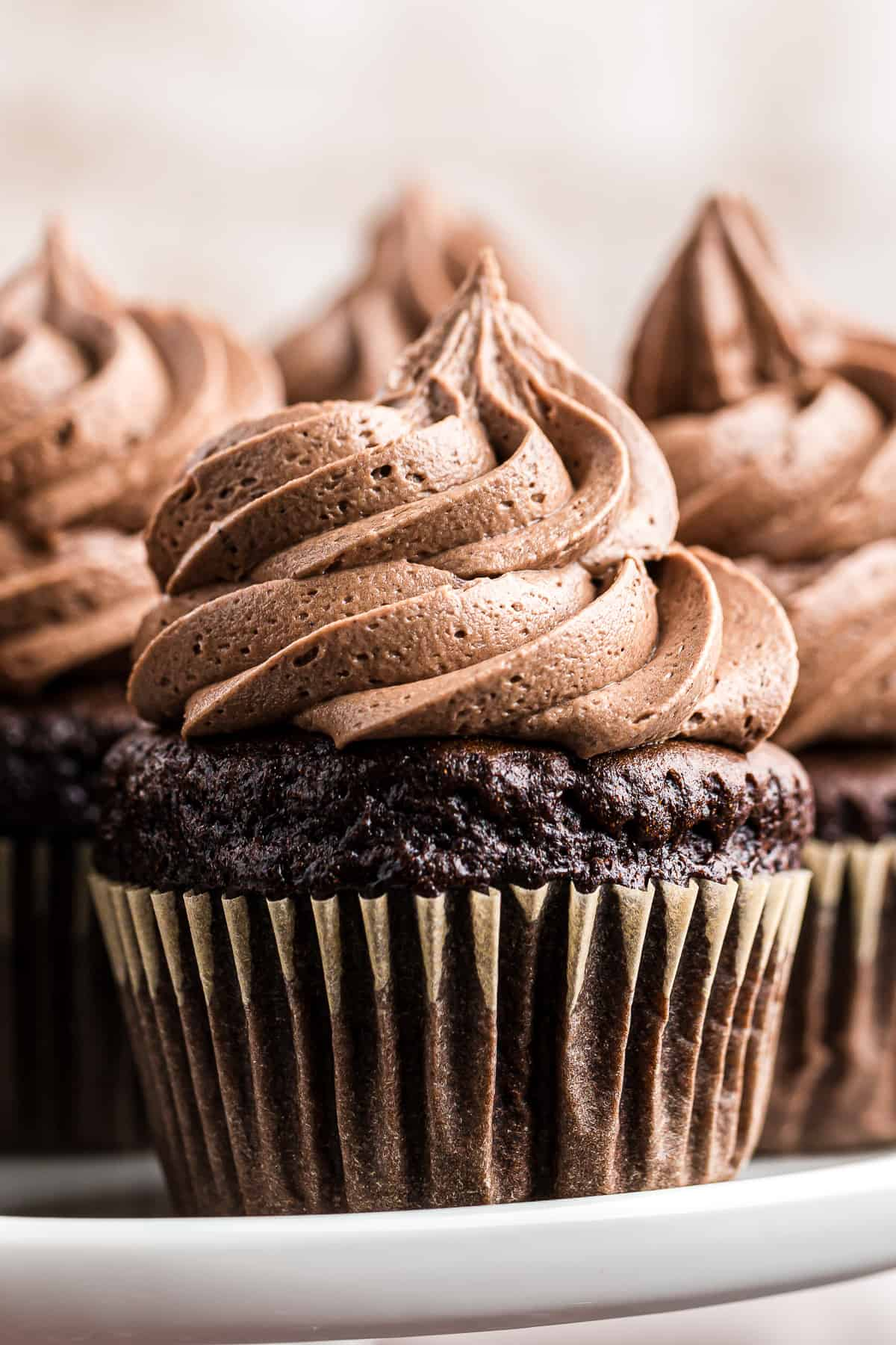 chocolate cupcakes topped with chocolate buttercream icing