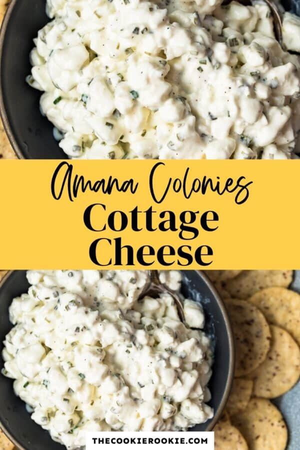 amish cottage cheese recipe pinterest
