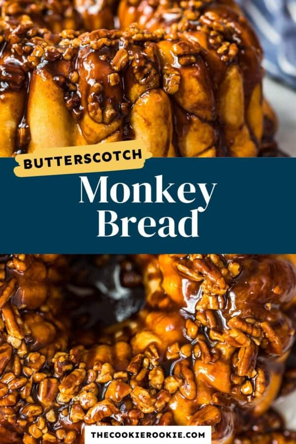 https://www.thecookierookie.com/butterscotch-monkey-bread-recipe-bubble-bread/(opens in a new tab)