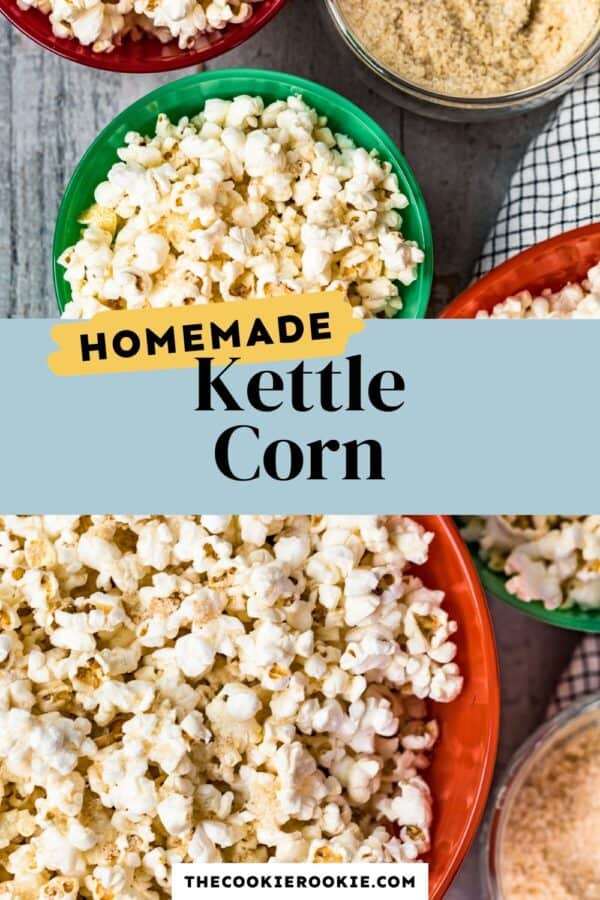homemade kettle corn seasoning pinterest