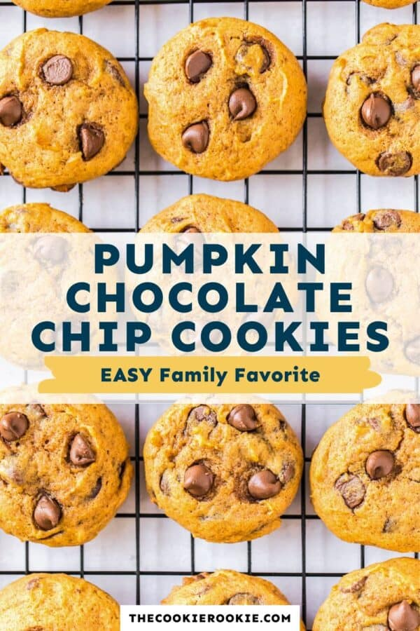 pumpkin chocolate chip cookies pinterest collage