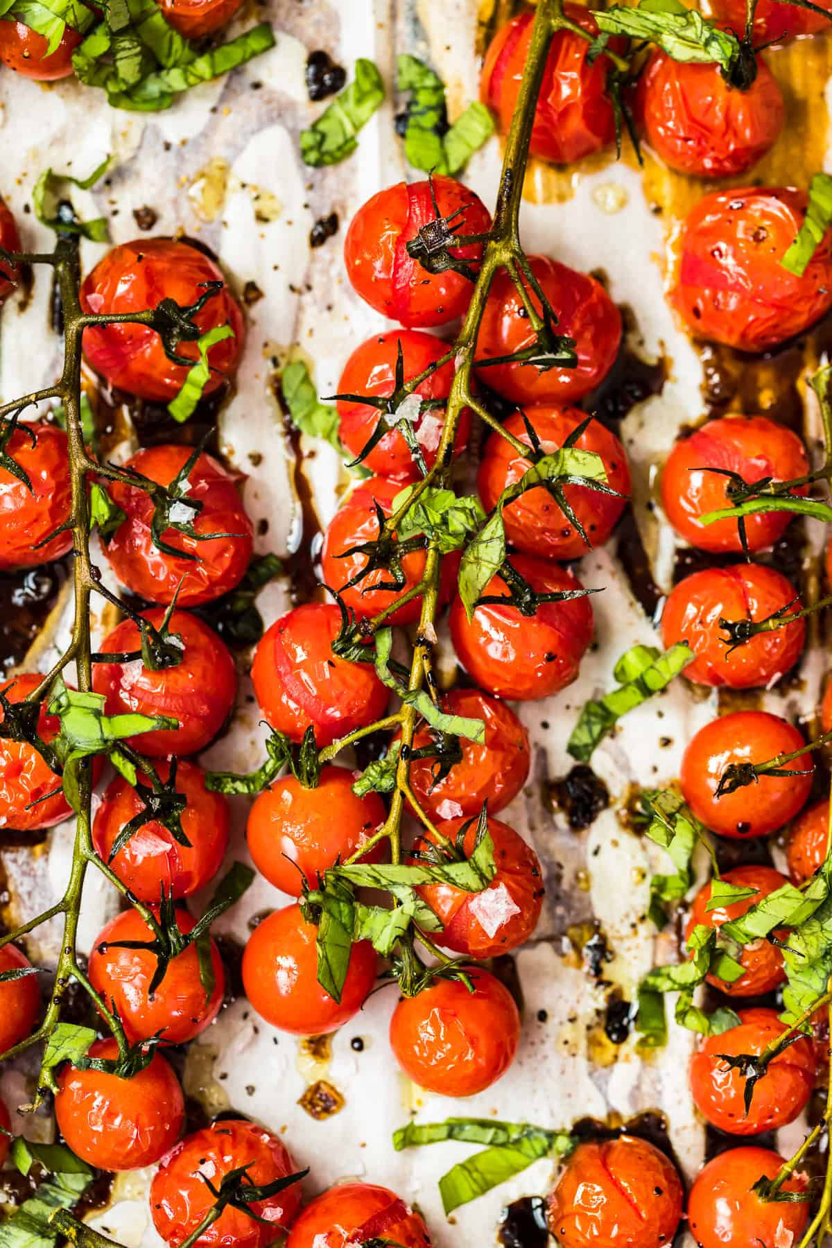 16+ Roasted Tomatoes with Balsamic and Basil Fotos