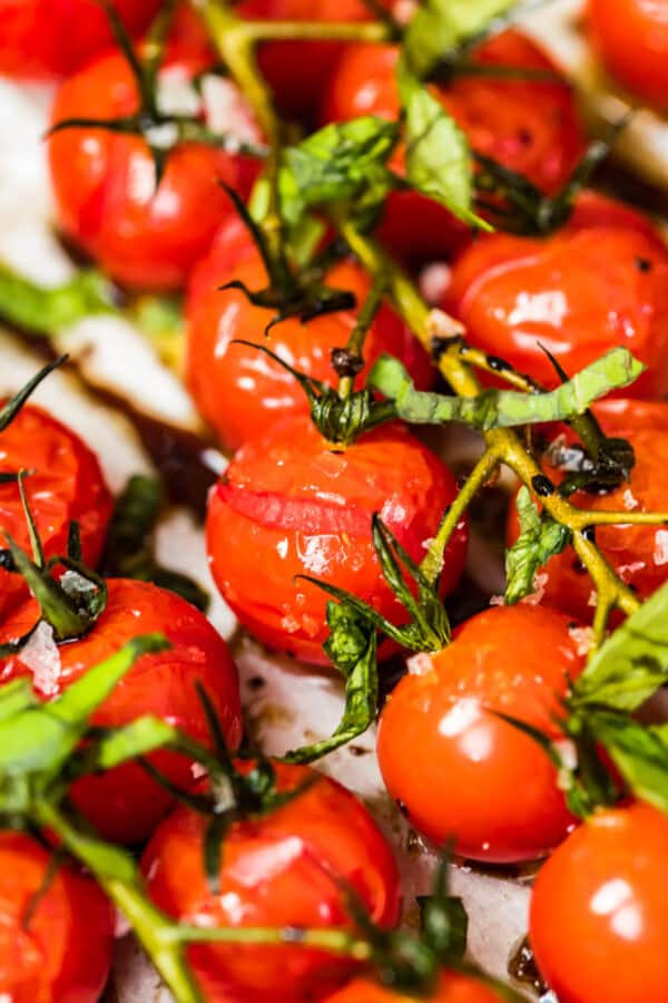 up close image of roasted tomatoes on the vine