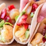 picking up shrimp taco