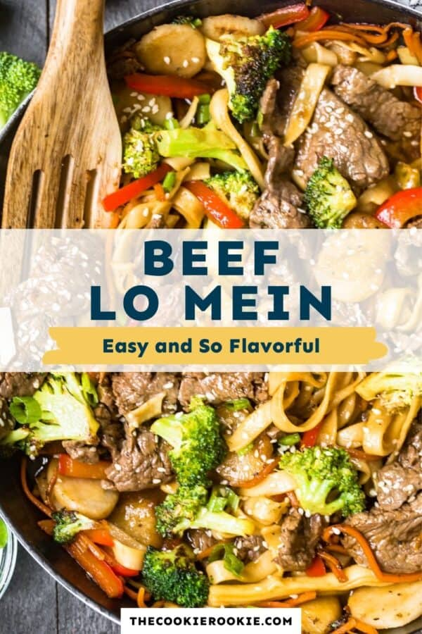 beef lo mein pinterest collage