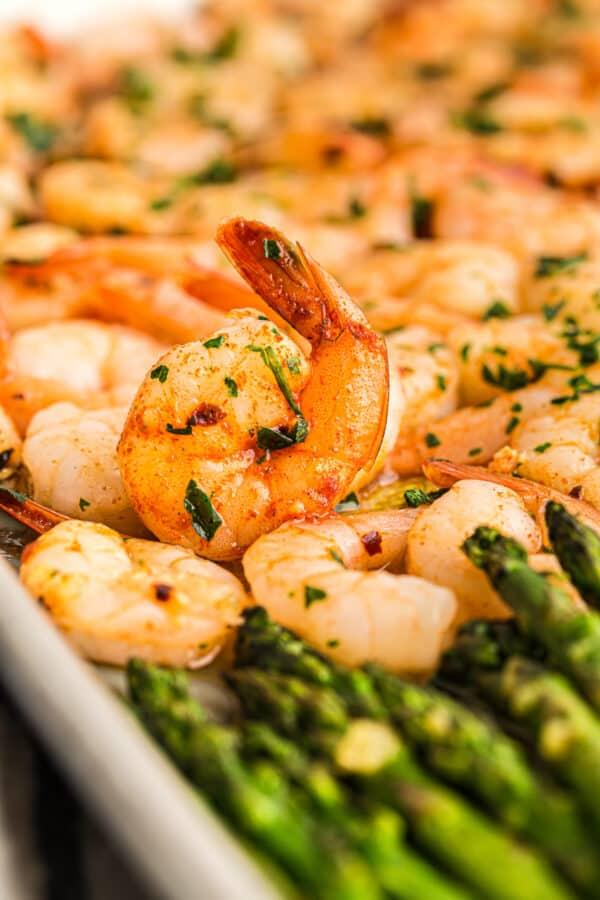 up close shrimp