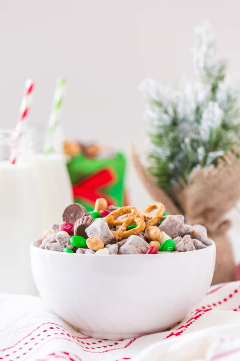 reindeer puppy chow in bowl