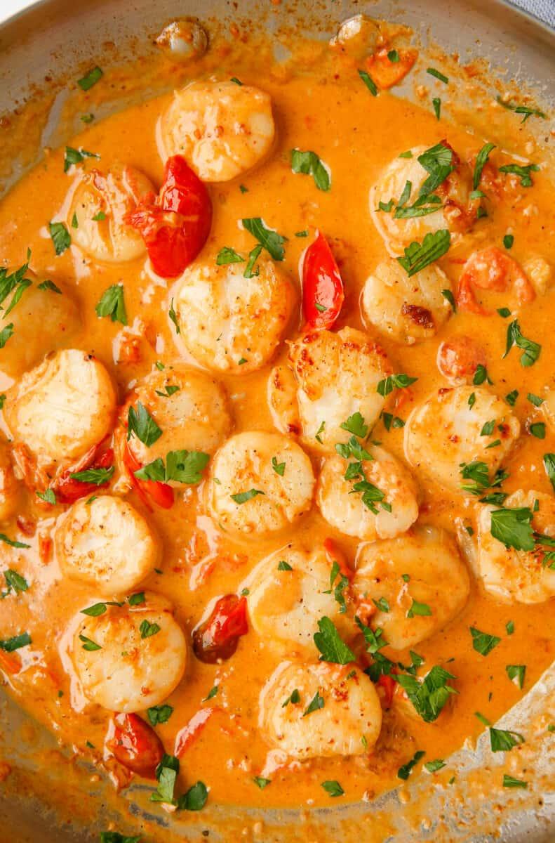 creamy garlic scallops in skillet