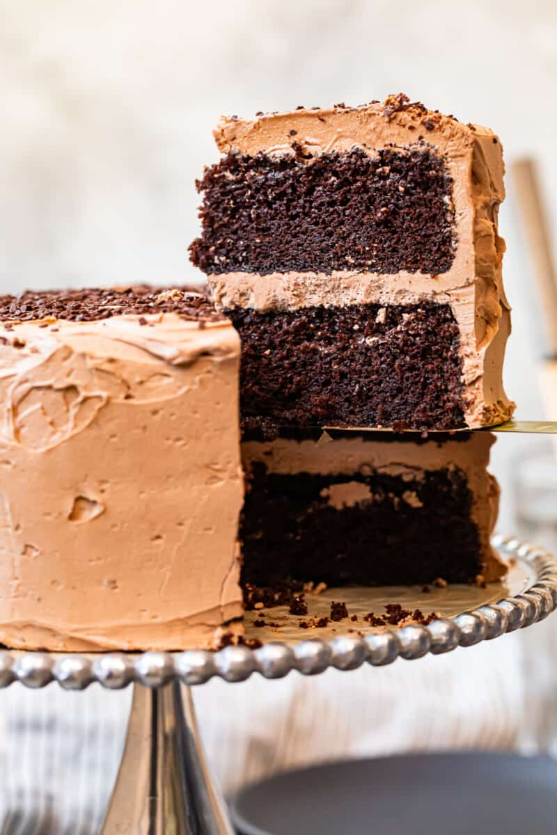 best chocolate cake with chocolate frosting on cake stand