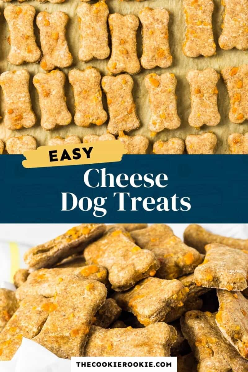 cheese dog treats pinterest collage