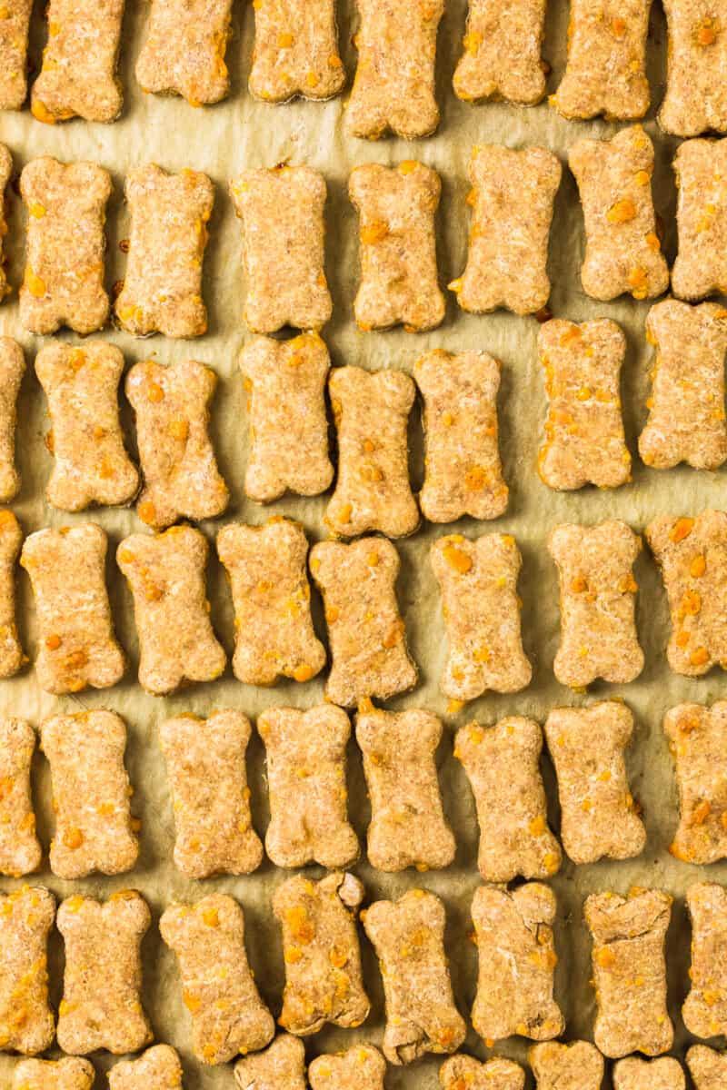 cheddar cheese dog treats on baking sheet