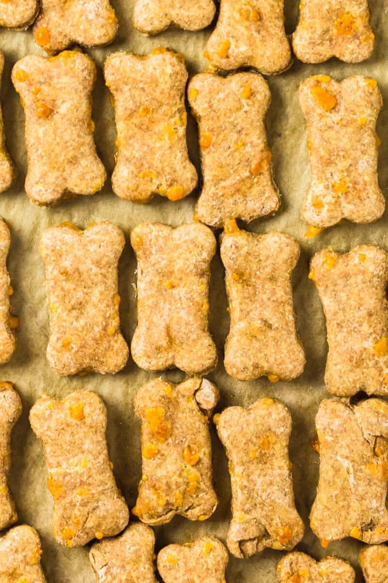 up close cheddar cheese dog treats on baking sheet