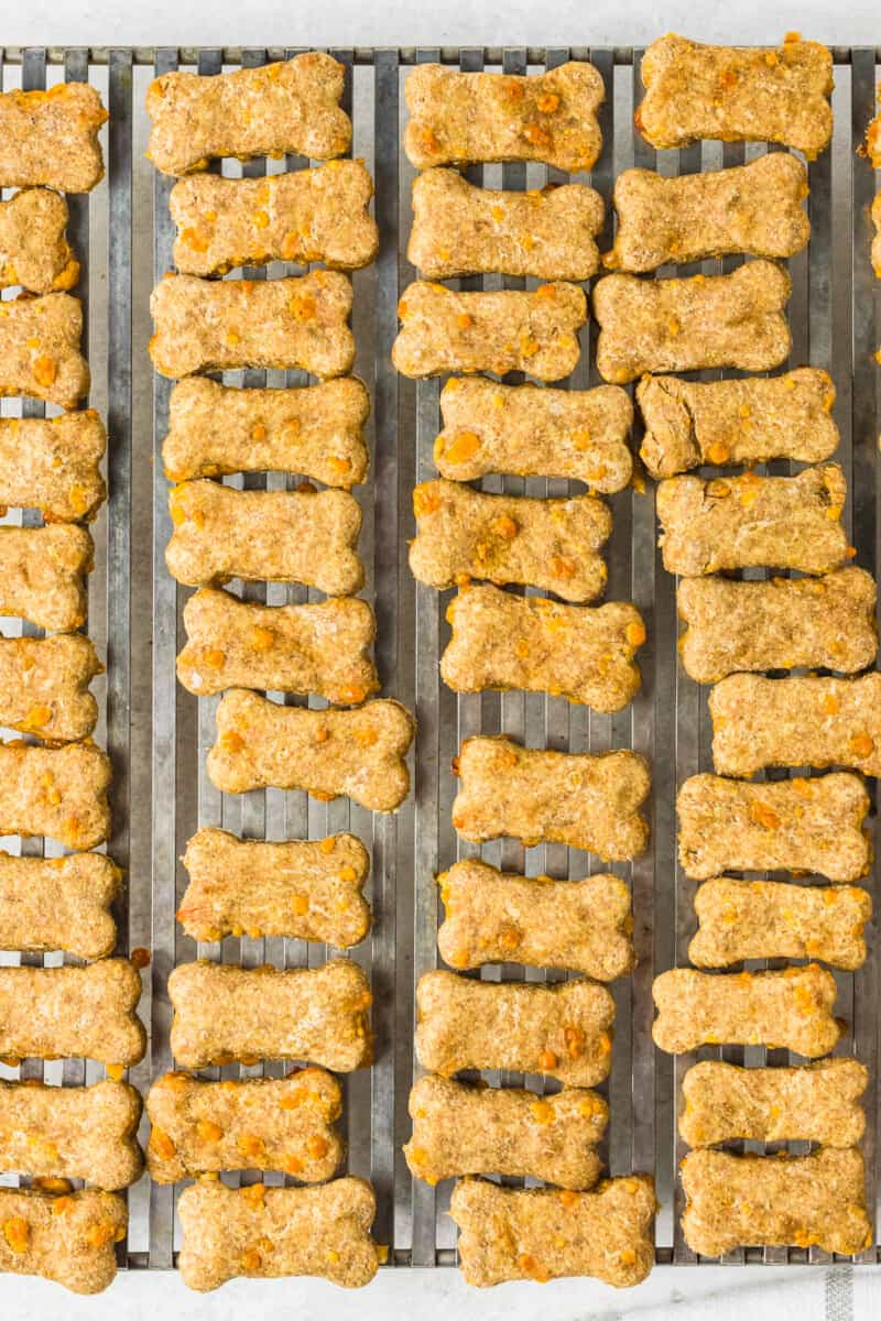 cheddar cheese dog treats on cooling rack