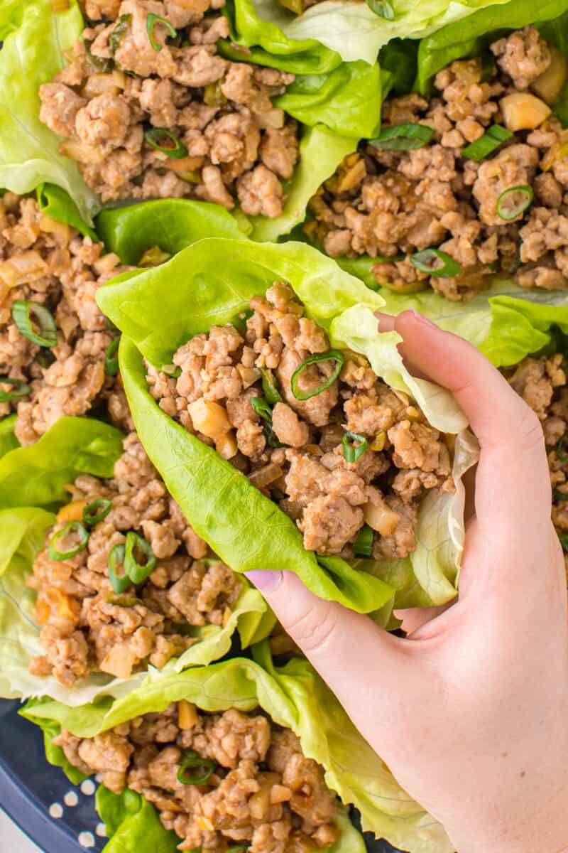 lifting up chicken lettuce wrap from platter