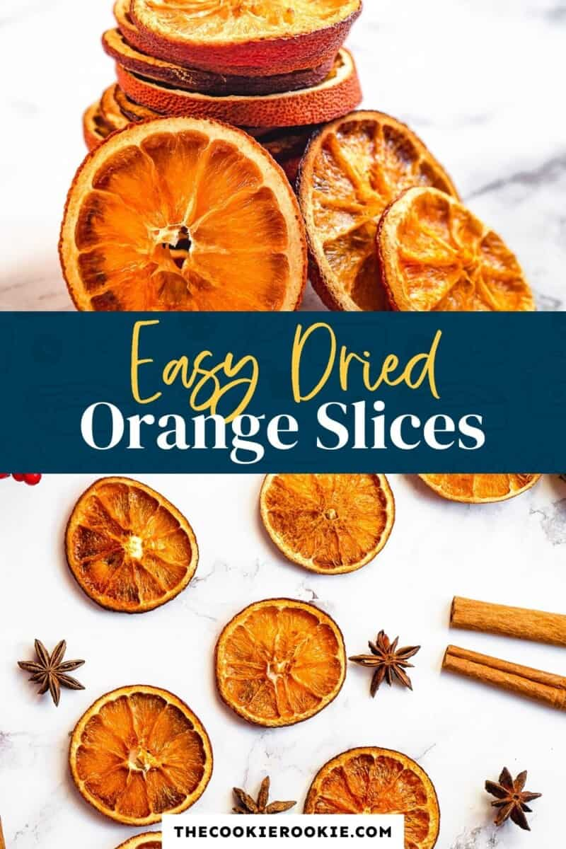 dried orange slices pinterest collage