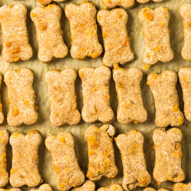 featured cheese dog treats