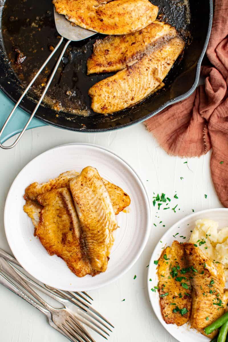 pan fried tilapia on white plates