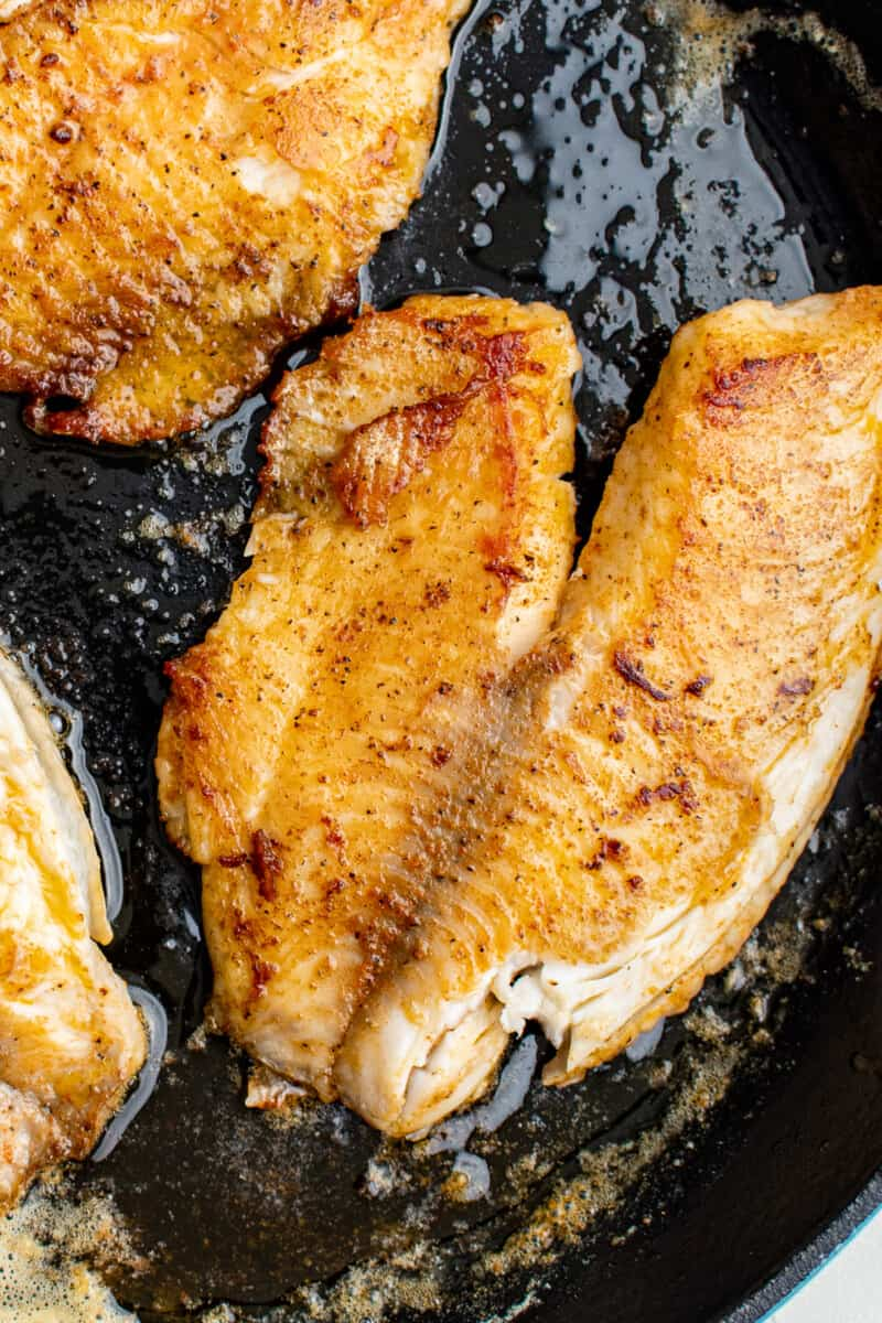 up close pan fried tilapia in skillet