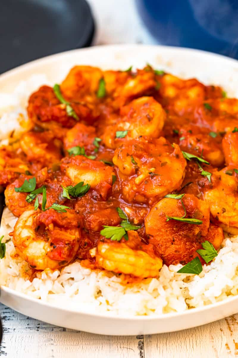 creole shrimp served over rice