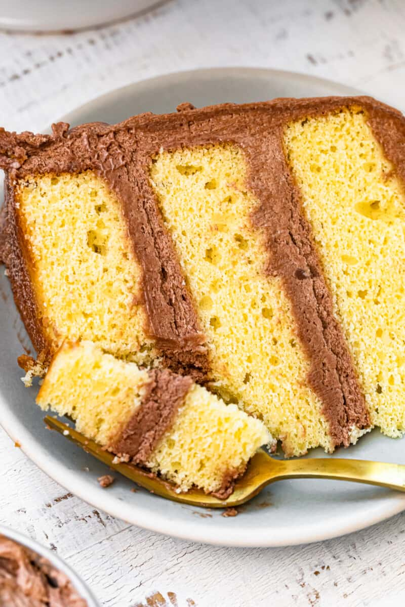 yellow cake laying on plate with milk chocolate buttercream