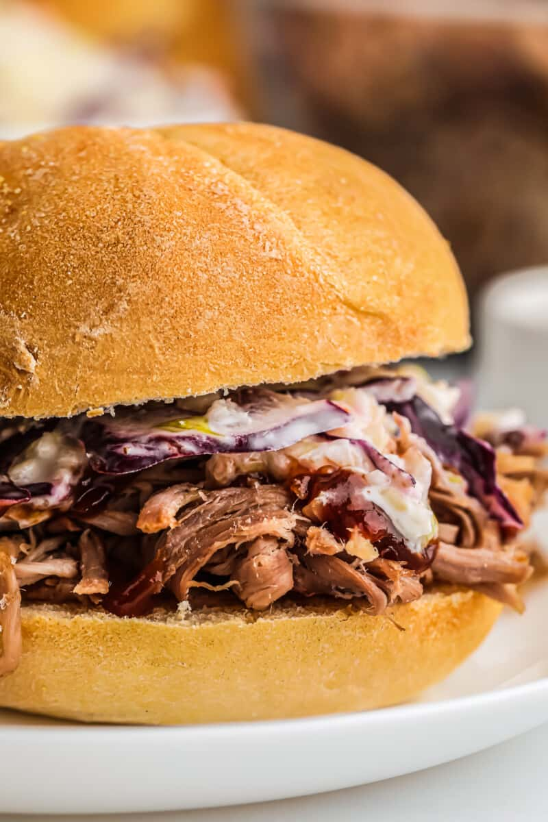 up close smoked pulled pork sandwich
