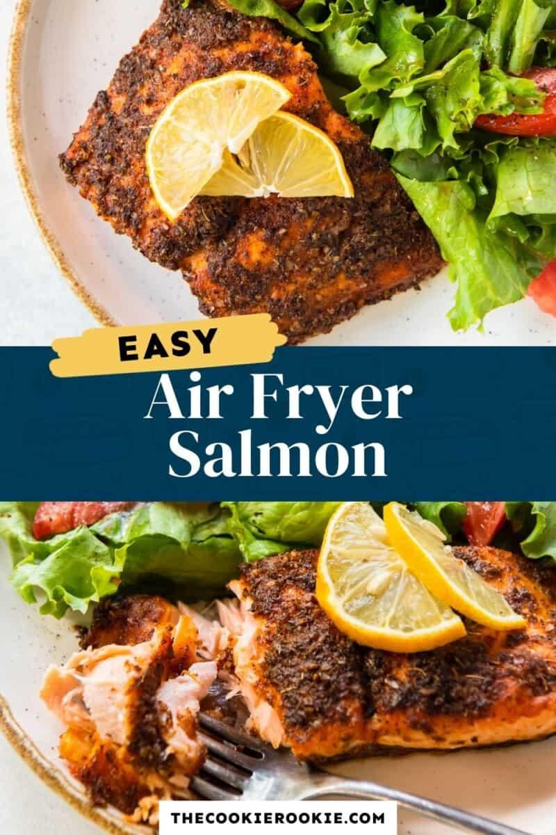air fryer salmon pinterest