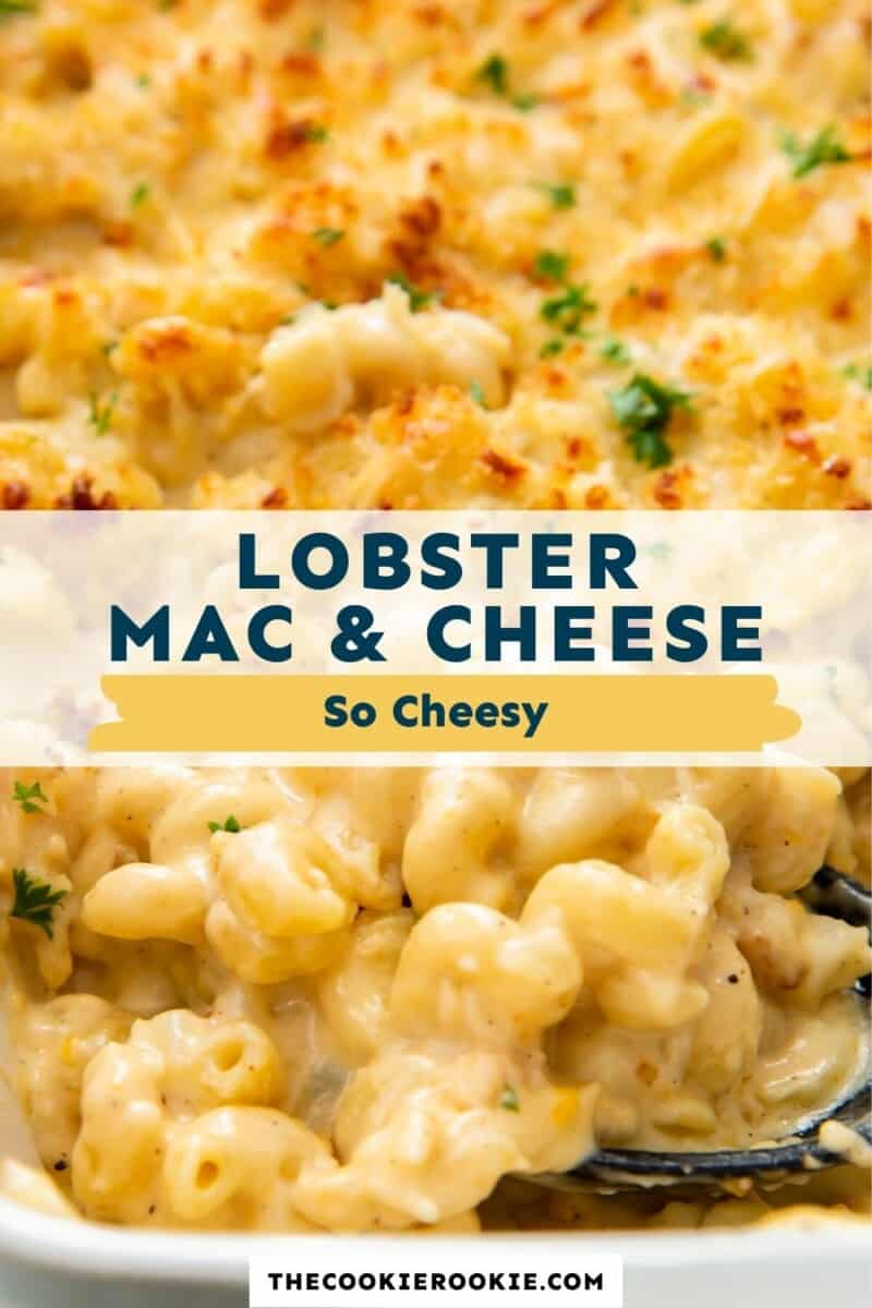 lobster mac and cheese pinterest